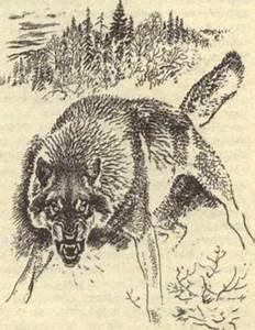 печать волчья лапа - символ силы и отсутствия страха