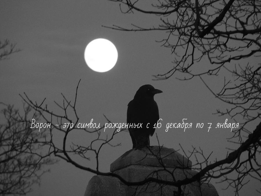 Чертог ворона, значение