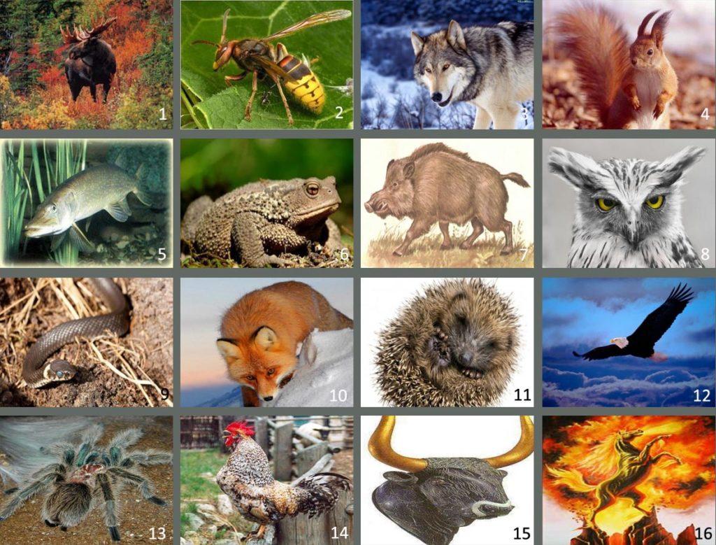 славянский гороскоп животных по годам