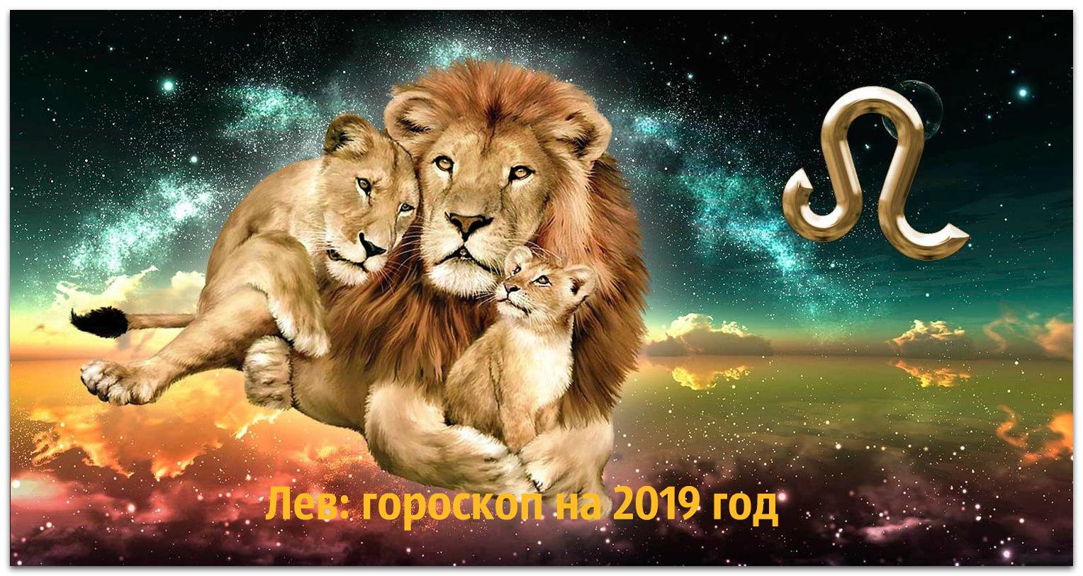 Знак зодиака лев год кабана