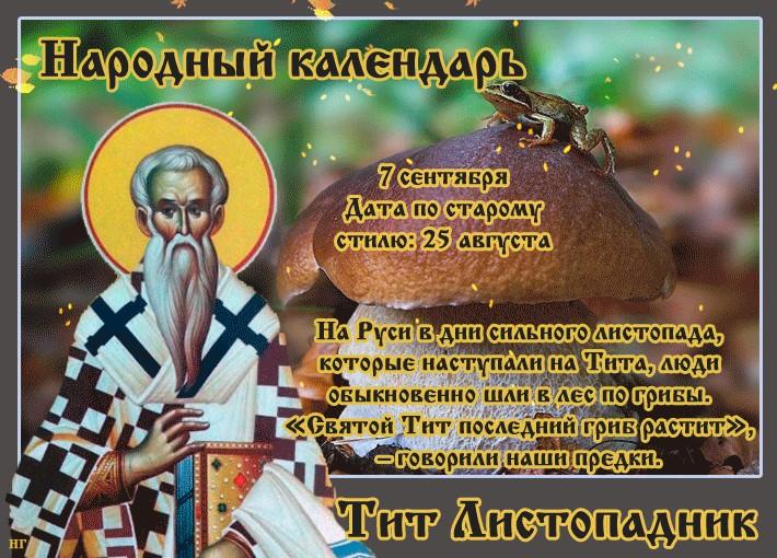 7 сентября, народные приметы и традиции на Тит листопадник – 3