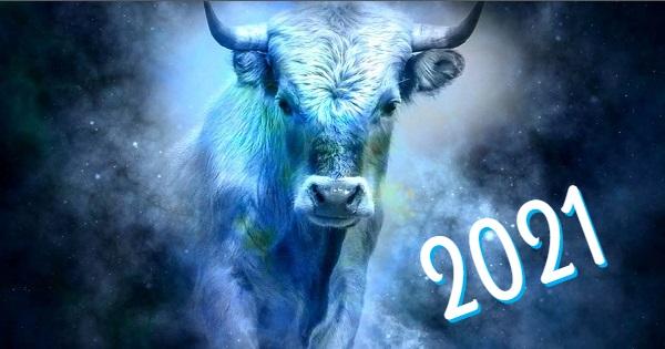 2021 год год быка
