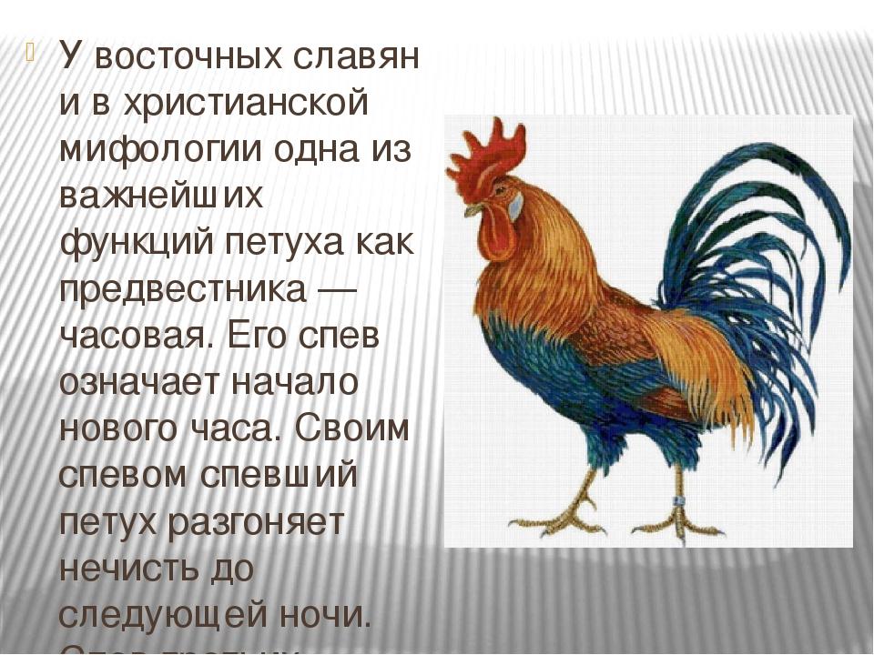 Наступающий 2021 (7529) год это год кричащего петуха по славянскому календарю – 4
