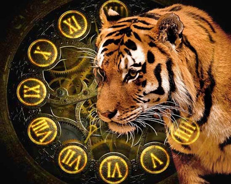2022 год год тигра